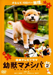 連続テレビドラマ 幼獣マメシバ 2
