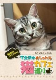 カフェねこonDVD 下北沢のおしゃれな猫カフェ巡り