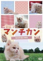 マンチカン〜短足小猫の物語〜