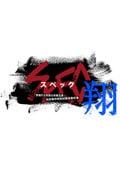 SPEC〜翔〜 警視庁公安部公安第五課 未詳事件特別対策係事件簿 ディレクターズカット版