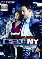 CSI:NY シーズン7セット