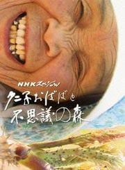 NHKスペシャル クニ子おばばと不思議の森