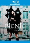 【Blu-ray】PiCNiC <完全版>