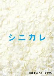 シニカレ 完全版 Vol.1