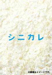 シニカレ 完全版 Vol.4