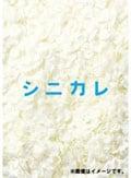 シニカレ 完全版 Vol.5