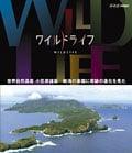 ワイルドライフ 世界自然遺産 小笠原諸島 絶海の楽園に奇跡の進化を見た