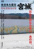 東日本大震災 それぞれの1年