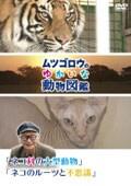 『ムツゴロウのゆかいな動物図鑑』シリーズ 「ネコ科の大型動物」「ネコのルーツと不思議」