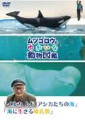 『ムツゴロウのゆかいな動物図鑑』シリーズ 「イルカ トド アシカたちの海」「海に生きる哺乳類」