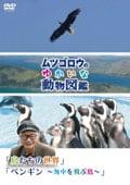 『ムツゴロウのゆかいな動物図鑑』シリーズ 「鳥たちの世界」「ペンギン 〜海中を飛ぶ鳥〜」