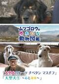 『ムツゴロウのゆかいな動物図鑑』シリーズ 「大型犬のルーツ チベタンマスチフ」「大型犬1 〜心と身体〜」