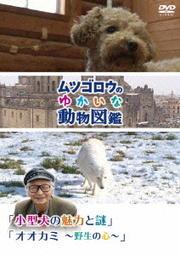 『ムツゴロウのゆかいな動物図鑑』シリーズ 「 小型犬の魅力と謎」「オオカミ 〜野生の心〜」