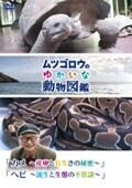 『ムツゴロウのゆかいな動物図鑑』シリーズ 「カメ 〜産卵と長生きの秘密〜」「ヘビ 〜誕生と生態の不思議〜」
