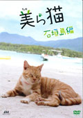 美(ちゅ)ら猫 石垣島編