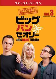 ビッグバン★セオリー <ファースト・シーズン> Vol.3