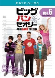 ビッグバン★セオリー <セカンド・シーズン> Vol.6