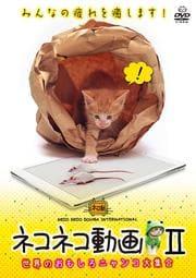 ネコネコ動画 〜世界のおもしろニャンコ大集合〜 II