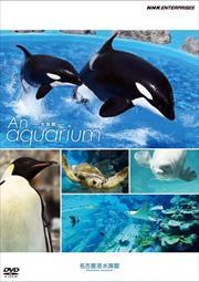 An Aquarium -水族館- 名古屋港水族館