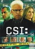 CSI:科学捜査班 シーズン14 Vol.5
