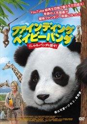 ファインディング ベイビー パンダ くしゃみパンダを探せ!