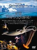 NHKスペシャル ディープ オーシャン 南極 深海に巨大生物を見た