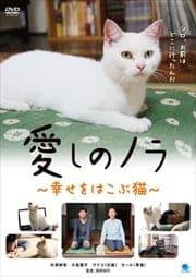 愛しのノラ 〜幸せをはこぶ猫〜