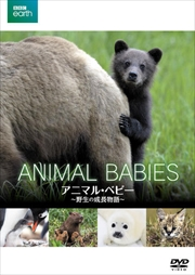 BBC earth アニマル・ベビー 〜野生の成長物語〜