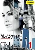 グレイズ・アナトミー シーズン14 Vol.1