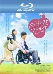 【Blu-ray】パーフェクトワールド 君といる奇跡