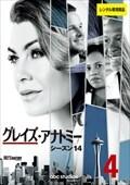 グレイズ・アナトミー シーズン14 Vol.4