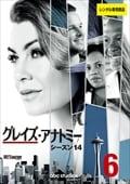 グレイズ・アナトミー シーズン14 Vol.6
