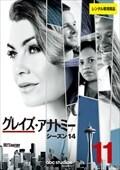 グレイズ・アナトミー シーズン14 Vol.11