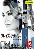 グレイズ・アナトミー シーズン14 Vol.12