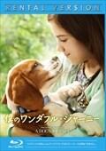 【Blu-ray】僕のワンダフル・ジャーニー