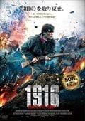 1916 〜自由をかけた戦い〜