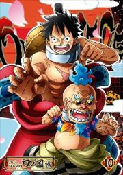 ONE PIECE ワンピース 20thシーズン ワノ国編 R-10