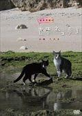 岩合光昭の世界ネコ歩き 沖縄 久高島
