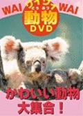ワイワイ動物DVD かわいい動物大集合!