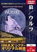 狼-ウルフ